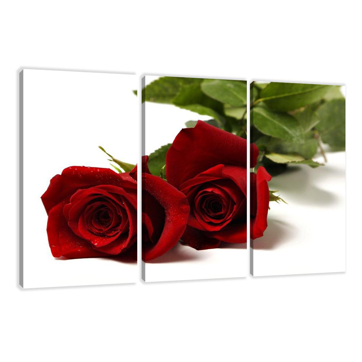 leinwand wandbilder verschiedene bilder motive 160 x 90 cm dreiteilig 1571 d1 ebay. Black Bedroom Furniture Sets. Home Design Ideas
