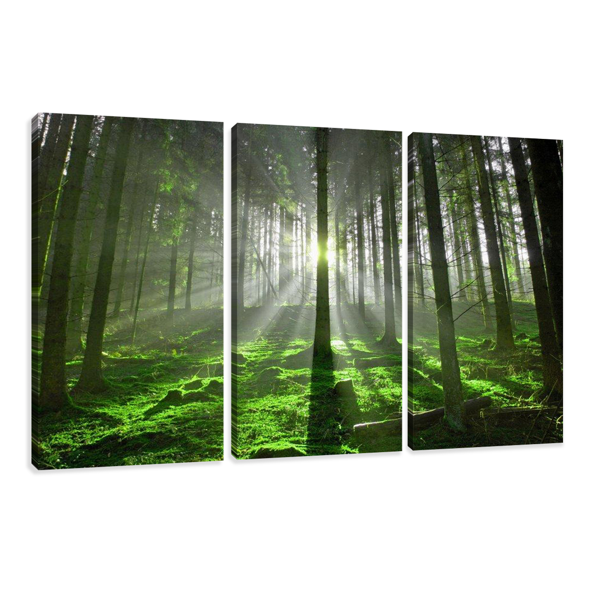 leinwand wandbilder bild wald licht b ume verschiedene gr en kunstdruck 1513 c1 ebay. Black Bedroom Furniture Sets. Home Design Ideas