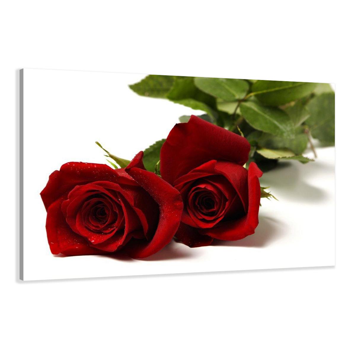 Leinwand wandbilder verschiedene bilder motive 120 x 80 cm - Significado rosas blancas ...