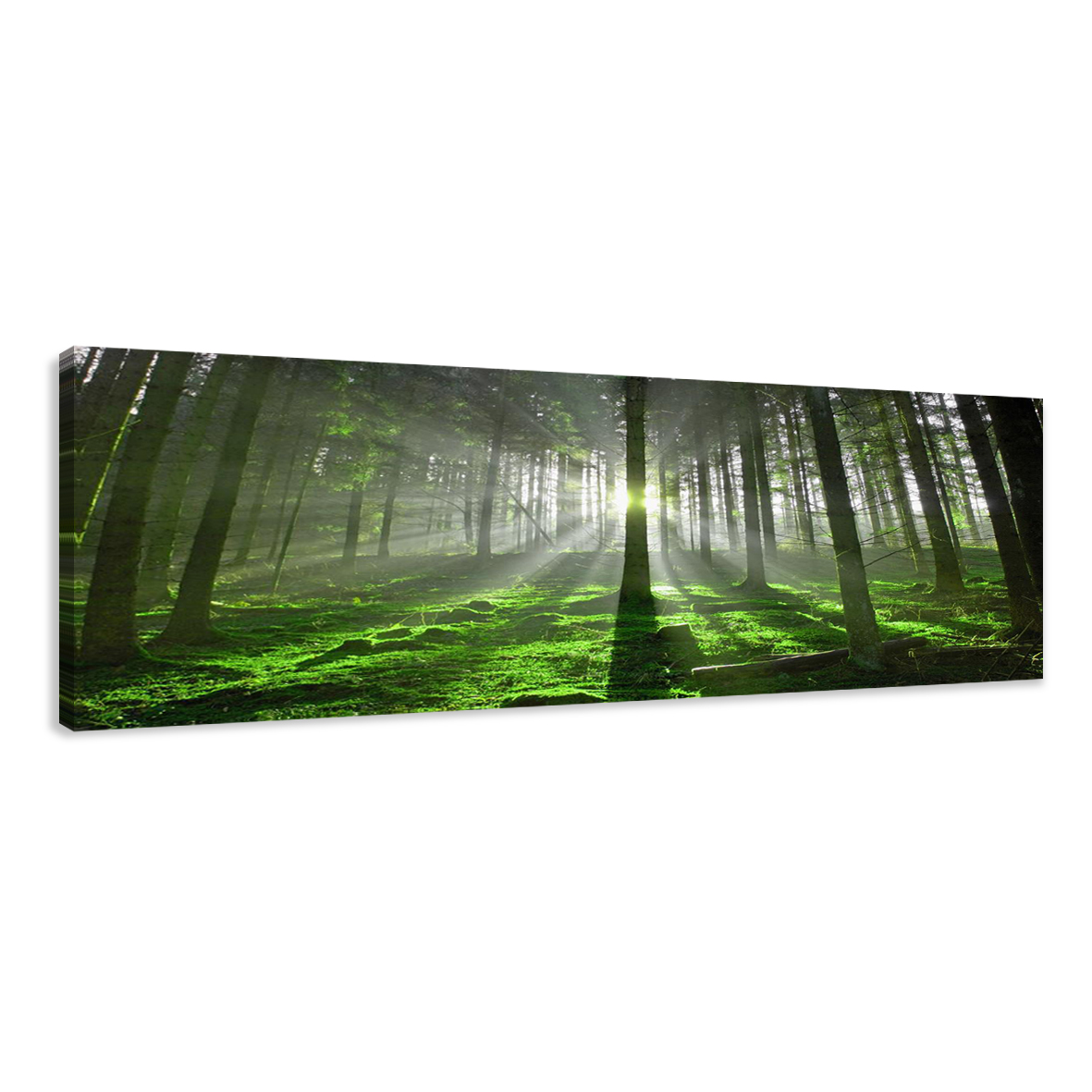 leinwand wandbilder bild wald licht b ume verschiedene gr en kunstdruck 1513 d1 ebay. Black Bedroom Furniture Sets. Home Design Ideas